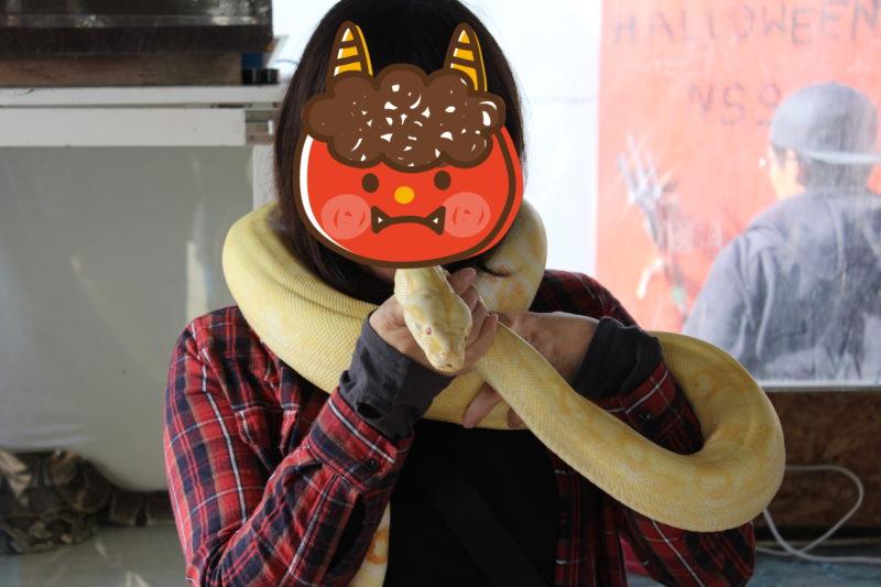 ヘビとママ